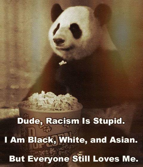 equality Panda